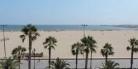 В Испании закрыли пляж из-за акулы