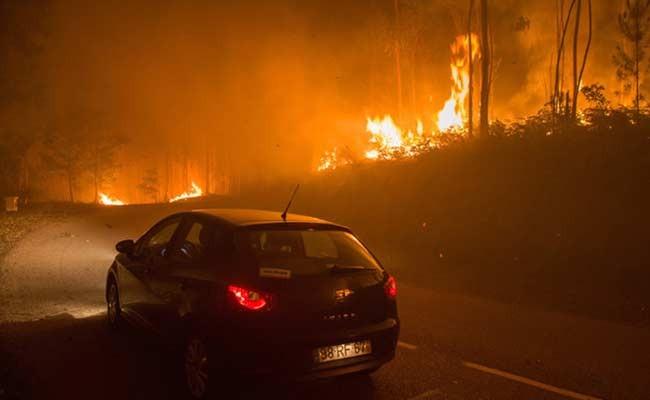 В Португалии во время пожара 12 человек спаслись в баке для воды