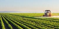 Португалия: аграрный баланс улучшился на 700 млн евро