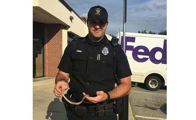 Испугавшийся заползшей в машину змеи американец вызвал полицию
