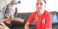 Попугай-британец за время странствий выучил испанский