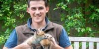 Мужчина спас из утробы мертвой лисы четверых лисят