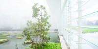 Италия: путешествие по миру растений в центре Падуи