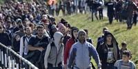 Испания: Барселона приняла рекордное число беженцев