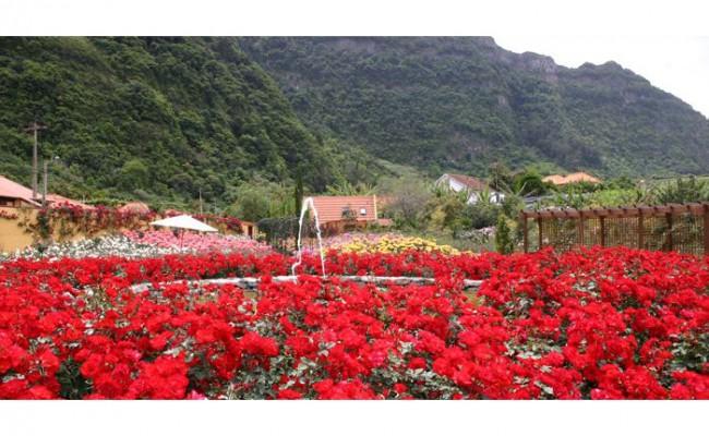 Португалия: уникальный розарий