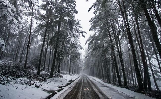 Португалия: погода на следующие дни
