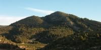 Бесплатная экскурсия - в испанском природном парке