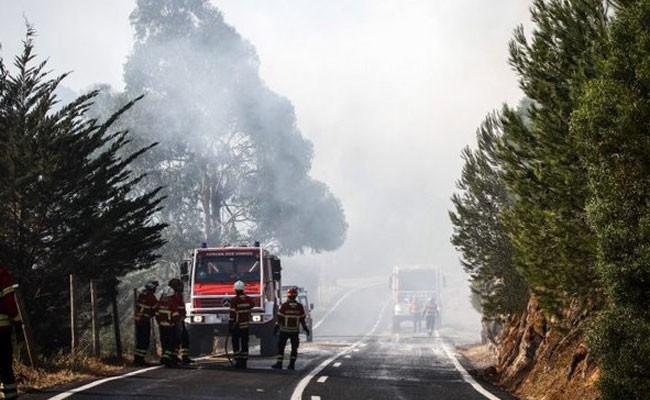 Португалия: природный парк Синтра-Кашкайш - восстанавливается