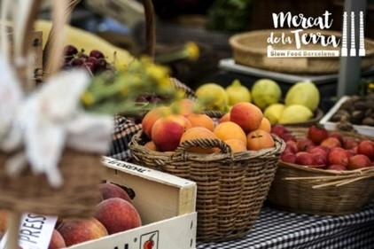 Испания: рынок сезонных продуктов Slow Food