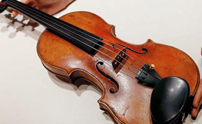 Из тысяч елей в Италии сделают музыкальные инструменты