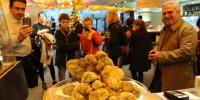 Белый трюфель продан в Италии за рекордные 75 тыс. евро