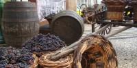 Португалия: в Фуншале вино льется рекой