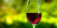 Безалкогольное красное вино понижает давление лучше алкогольного
