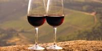 Португалия: не солнце и море, а… вино